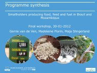 presentation - Biofuel and Food