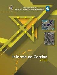 Informe - Instituto Geográfico Agustín Codazzi