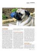 Seit der Mensch Tiere züchtet, leidet die Kreatur unter den ... - VgT - Seite 6