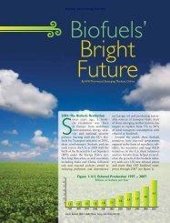 Biofuels Bright Future - Emerging Markets Online