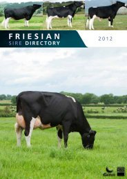 FRIESIAN - Genus UK website