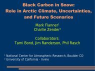 Black Carbon in Snow: Role in Arctic Climate, Uncertainties ... - NILU