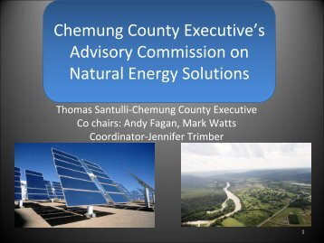 Chemung County Executive's Advisory Commission ... - Tioga County