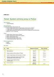 Temat: System ochrony pracy w Polsce - Centralny Instytut Ochrony ...