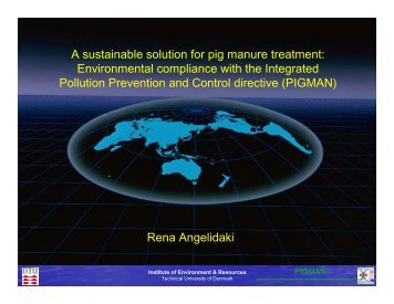 Rena Angelidaki A sustainable solution for pig manure treatment ...