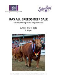 RAS ALL BREEDS BEEF SALE - Simmental Australia