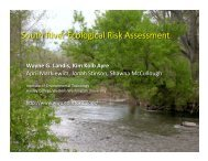 South River Ecological Risk Assessment - Western Washington ...