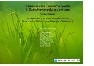 Consumer versus resource control in Scandinavian eelgrass systems