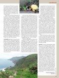 Zwischen Bananen und Vulkanen - 500km zu Fuß auf den ... - Rytz - Seite 6