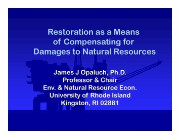 Restoration as a Means of Compensating for Damages to Natural ...