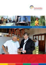 Annual Report 2011 - ProCredit
