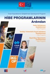 Hibe Programlarının Ardından - İnsan Kaynaklarının Geliştirilmesi ...