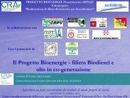filiera Biodiesel e olio in co-generazione - Luca ... - Enrico Avanzi
