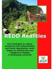 REDD Realities - The REDD Desk