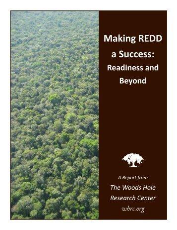 Making REDD a Success: - The REDD Desk