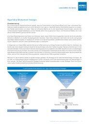 Factcard Hypo Value Momentum Strategie (PDF)