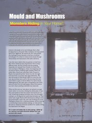 Mould and Mushrooms - Healthy Options magazine