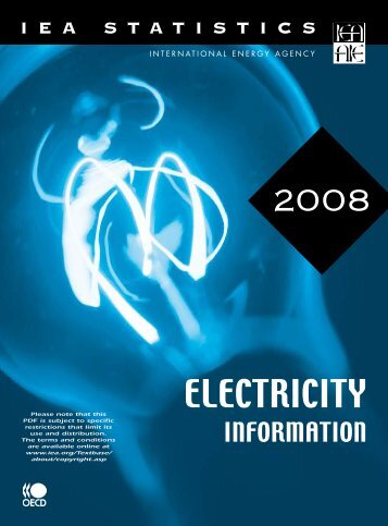 Electricity Information