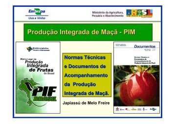 Produção Integrada de Maçã - PIM - Embrapa Uva e Vinho