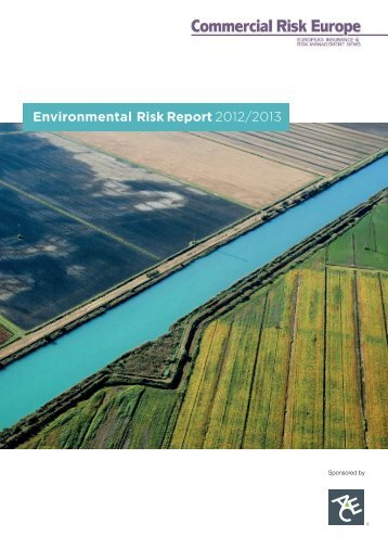 (CRE): environmental risk report 2012-2013 - ACE Group
