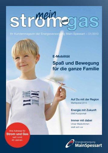 Kundenmagazin Ausgabe Nr. 1 / 2013 (pdf | 2,00 MB)