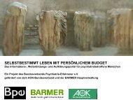 Persönliches Budget - YAEL ELYA Institut