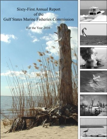 Annual Report of the GSMFC 61.pdf - Gulf States Marine Fisheries ...