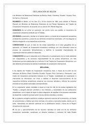 DECLARACIÓN DE BELÉM - OTCA