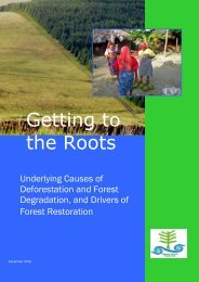 Getting to the Roots: Underlying Causes of Deforestation and Forest ...