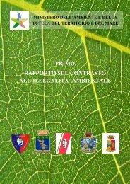 primo rapporto sul contrasto all'illegalita' ambientale - Ministero dell ...