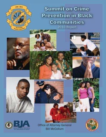 2010 Revised Summit Report