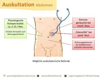 auskultation-abdomen-hufeland-schule-senden.jpg