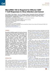 MicroRNA-155 Is Required for Effector CD8+ T Cell ... - Immunology