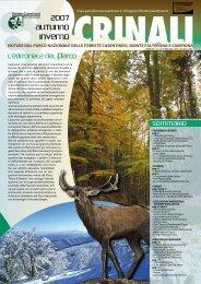 Autunno - Inverno 2007/2008 - Parco Nazionale delle Foreste ...