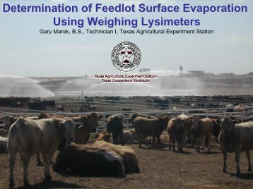 Determination of Feedlot Surface Evaporation Using Weighing ...
