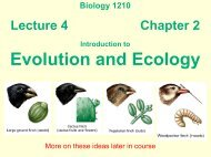 Evolution and Ecology Intro - Biology Courses Server