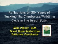 Reflections on 30+ Years of Tackling the Cheatgrass/Wildfire Cycle ...
