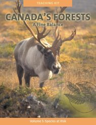 Volume 5 - Manitoba Forestry Association
