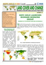 Newsletter 19 - GOFC-GOLD LC-IT Office