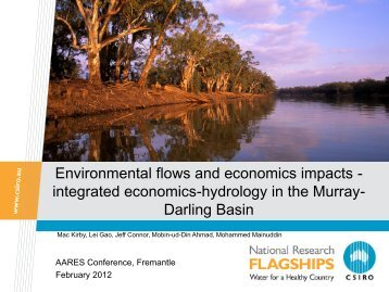 environmental flows and economics impacts