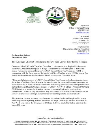 The American Chestnut Tree Returns to New York City in Time for ...