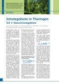 download zeitung nr.4, 2012 - WALDBESITZERVERBAND FÜR ... - Seite 3