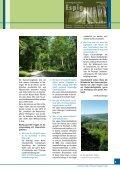 download zeitung nr.4, 2012 - WALDBESITZERVERBAND FÜR ... - Seite 4
