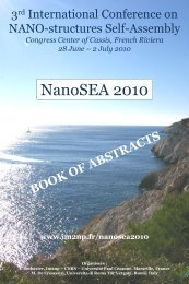book of abstracts - IM2NP