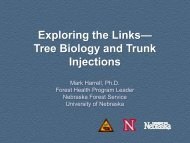 Exploring the Links— Tree Biology and Trunk Injections