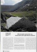 Terra Grischuna - Bergwaldprojekt - Page 3