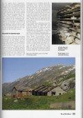Terra Grischuna - Bergwaldprojekt - Page 4