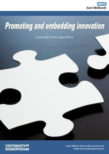Promoting and Embedding Innovation