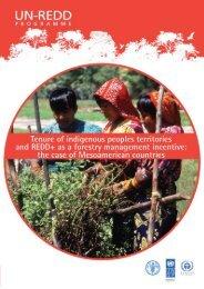 Tenure of Indigenous Peoples Territories and REDD+ ... - Unredd.net