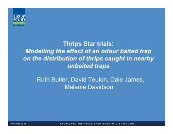 Thrips Star trials: Modelling the effect of an odour baited trap on the ...